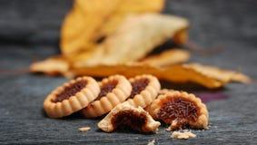 Оранжевое bisquit студня, печенья Стоковая Фотография RF