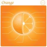 Оранжевое infogram Стоковая Фотография RF