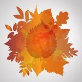 Оранжевой покрашенная акварелью предпосылка осени Иллюстрация вектора
