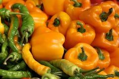 Оранжевые и зеленые перцы Стоковые Изображения RF