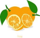 Оранжевые куски, собрание иллюстраций Стоковое Фото