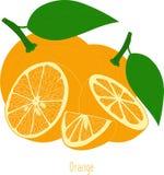 Оранжевые куски, собрание иллюстраций Стоковые Изображения RF