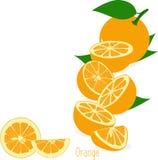 Оранжевые куски, собрание иллюстраций Стоковое фото RF