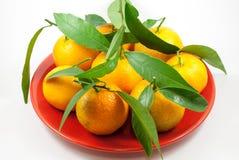 Оранжевые мандарины - Клементины - tangerines наваливают в плите на wh Стоковое Изображение RF