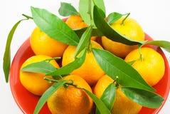 Оранжевые мандарины - Клементины - tangerines наваливают в плите на wh Стоковое фото RF