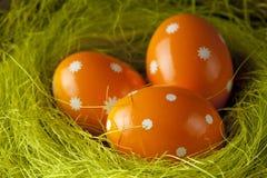 Оранжевые пасхальные яйца в гнезде Стоковое Фото