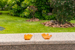 Оранжевые перчатки работы лежа дальше на парапете в парке Стоковые Фотографии RF
