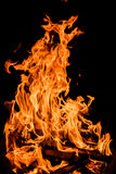 Оранжевые пламена огня изолированные на черной предпосылке Стоковая Фотография