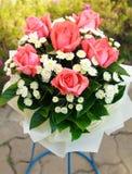 Оранжевые розы. Стоковая Фотография RF