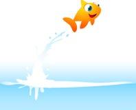 Оранжевые рыбы рыбки скача из воды Стоковые Изображения