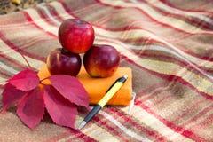 Оранжевые тетрадь, ручка и яблоко на шотландке Стоковая Фотография RF