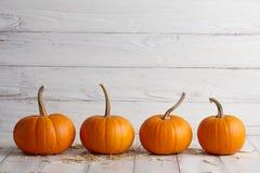 Оранжевые тыквы хеллоуина на белых планках Стоковые Изображения