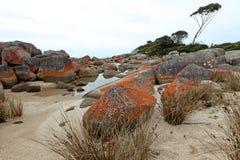 Оранжевые утесы на заливе Binalong, Тасмании Стоковое фото RF