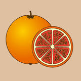 Оранжевые цитрусовые фрукты бесплатная иллюстрация