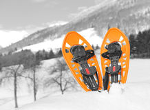 Оранжевые snowshoes в горах в зиме Стоковые Фото
