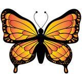 Оранжевый вектор бабочки изолированный на белой предпосылке бесплатная иллюстрация