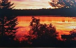 Оранжевый & желтый заход солнца Стоковые Изображения