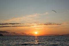 Оранжевый заход солнца и темная вода Стоковые Фотографии RF
