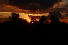 Оранжевый заход солнца подкладки Стоковые Фотографии RF