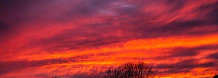 Оранжевый заход солнца стоковое изображение rf