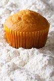 Оранжевый крупный план булочки в напудренном сахаре вертикально Стоковое Изображение