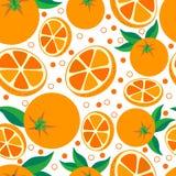 Оранжевый Предпосылка вектора безшовная с апельсинами Стоковое Изображение RF