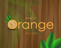 Оранжевый плакат с цитрусовыми фруктами изображения Стоковое Изображение