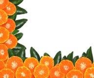 Оранжевый плодоовощ на листьях текстурирует, изолированный на белой предпосылке Стоковые Фотографии RF