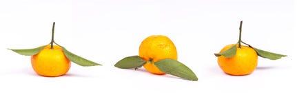 Оранжевый плодоовощ  стоковая фотография rf
