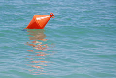 Оранжевый томбуй Стоковая Фотография