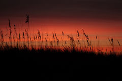 Оранжевый фиолетовый восход солнца Стоковое фото RF