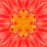 Оранжевый цветок мандалы Концентрический дизайн Kalaidoscope Стоковое Изображение