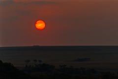 Оранжевый шарик на горизонте Стоковые Изображения RF
