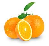 Оранжевый Стоковая Фотография