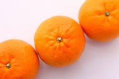 Оранжевый tankan цитруса плода 3 против белой предпосылки стоковое изображение rf