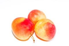 3 оранжевых зрелых сливы изолированной на белой предпосылке Стоковое фото RF