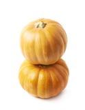 2 оранжевых изолированной тыквы Стоковые Изображения RF