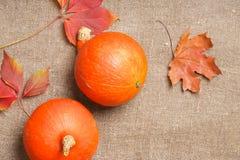 2 оранжевых тыквы Стоковые Изображения