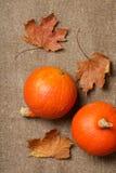 2 оранжевых тыквы Стоковые Изображения RF