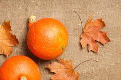 2 оранжевых тыквы Стоковое Изображение