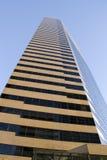 Организация бизнеса небоскреба стоковое фото rf
