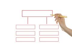 организация диаграммы Стоковые Фото