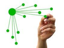 организация диаграммы Стоковые Изображения