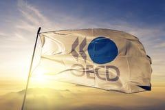 Организация для экономического сотрудничества и развитие ОЭСР сигнализируют ткань ткани ткани развевая на верхнем тумане тумана в иллюстрация вектора