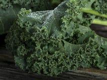 Органическая листовая капуста Стоковые Изображения RF