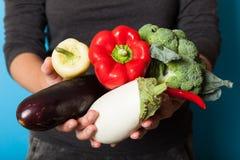 Органическая концепция еды сбора, доморощенные ингредиенты стоковые фотографии rf