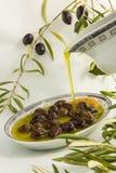 органическая оливка Стоковые Фото