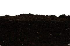Органическая почва Стоковая Фотография