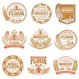 Органическая пшеничная мука, обрабатывающ землю ярлыки и логотипы вектора продуктов зерна иллюстрация штока