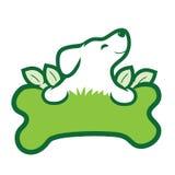 Органическая собака Стоковое Фото